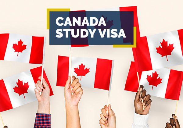 Canada Study Visa Consultant in Patiala